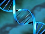 Генетические исследования в Германии