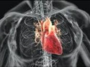 Кардиология, кардиохирургия: лечение сердца в Германии