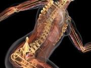 Ортопедия: лечение в Германии