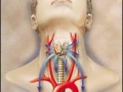 Рак горла, гортани и языка. Лечение и диагностика