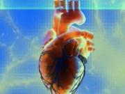 Саркома сердца или рак сердца. Лечение и диагностика