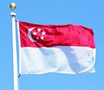 Сингапур. Программы обследований