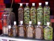 Змеиные лекарства